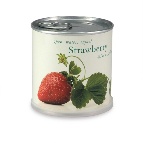 Flowers in cans - Strawberry
