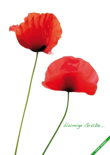 Fiorini seed postcards poppy, set of 10 pcs.